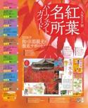 人気エリア紅葉ガイド【2016 秋限定の京都】#003