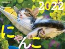 JTBのカレンダー にゃんこ 2022